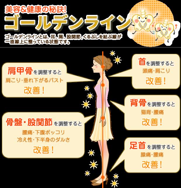 京都市 中京区 四条大宮 藤枝整骨院 姿勢と重心線について描かれているイラスト