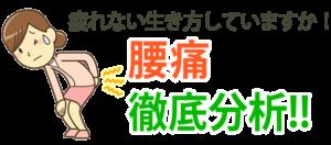 京都市 中京区 四条大宮 藤枝整骨院 腰痛 分析